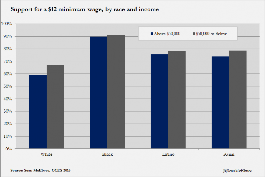 Support for a $12 minimum wage, by race and income